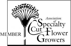assn of specialty cut flower growers logo