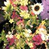 summer flowers, CSA share flowers, flower farm harvest, flowers, fresh flowers