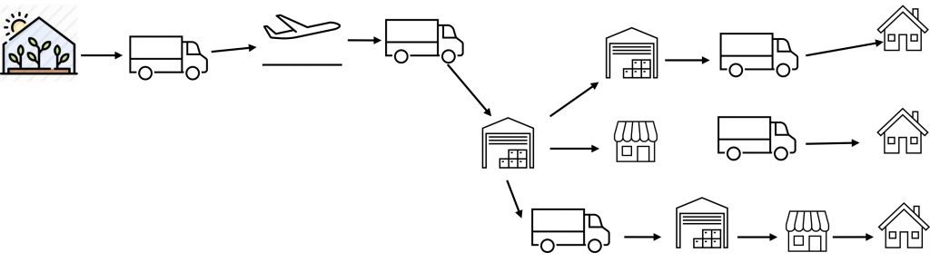 imported flowers delivery graphic, many steps